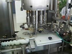 Image BORGO High Speed Rotary Capper Model V8-T 331490