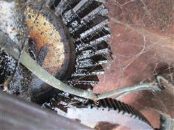 Image FMC C-150 Piston Filler 1513926