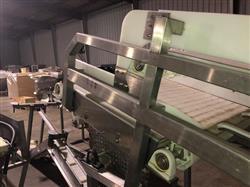 Image Frozen Block Incline Conveyor 1371604