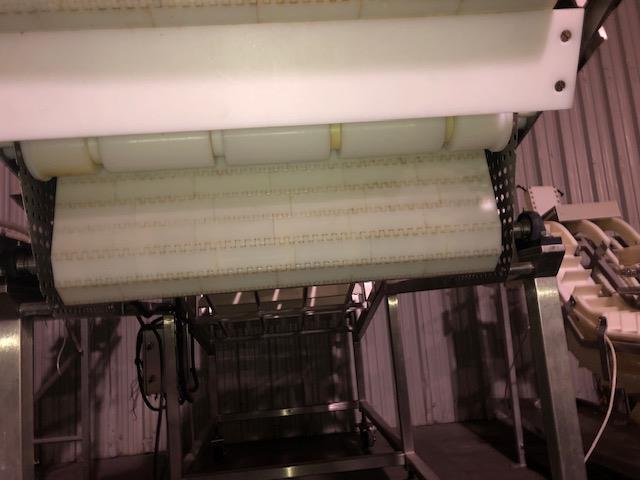 Image Frozen Block Incline Conveyor 1371605