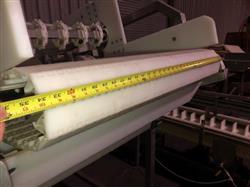 Image Frozen Block Incline Conveyor 1371606