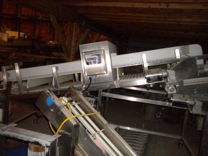 Image Frozen Block Incline Conveyor 334168