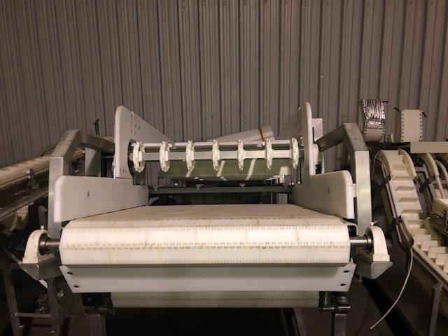 Image Frozen Block Incline Conveyor 1371600
