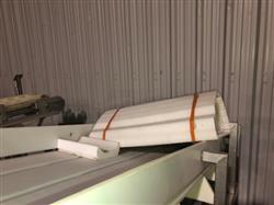 Image Frozen Block Incline Conveyor 1371601
