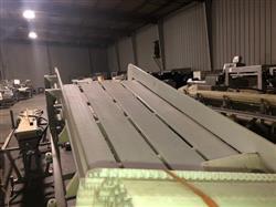 Image Frozen Block Incline Conveyor 1371602