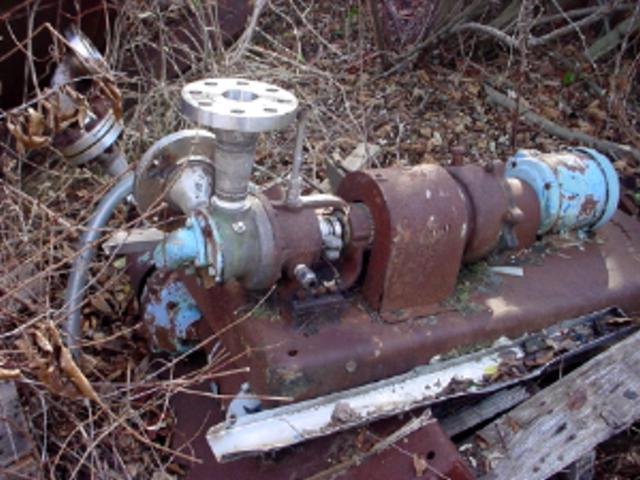 "1.5"" x 1.5"" VIKING Model H724 Stainless Steel Gear Pump"