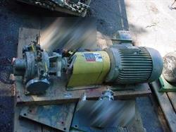 "164011 - 2"" ROPER Stainless Steel Positive Displacement Pump"