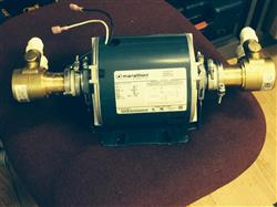 197299 - 1/3 HP Double Headed Pump