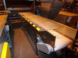 "208434 - 10'L x 17""W Stainless Steel Conveyor Food Grade"