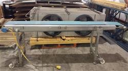 "209360 - 10 1/2"" x 96"" Stainless Steel Belt Conveyor"