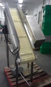 Image Inclined Conveyor 711818