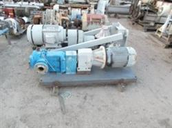 258772 - 10 HP VIKING Positive Displacement Pump