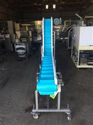300204 - Cleated Incline Conveyor