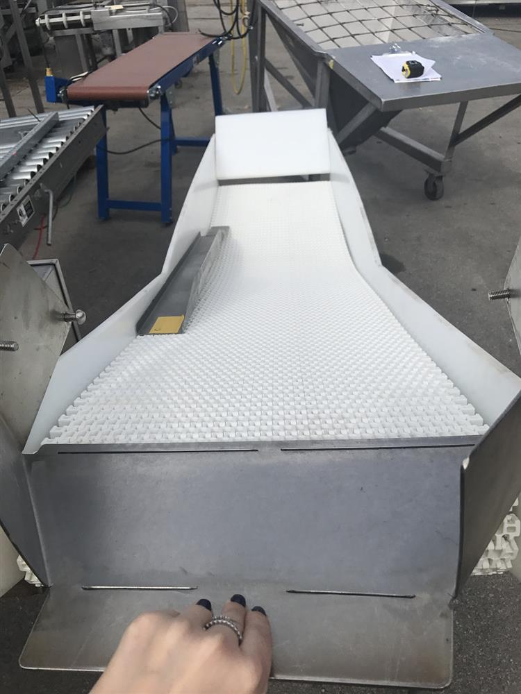 Image Belt Conveyor with Polyethylene Guards 1000901