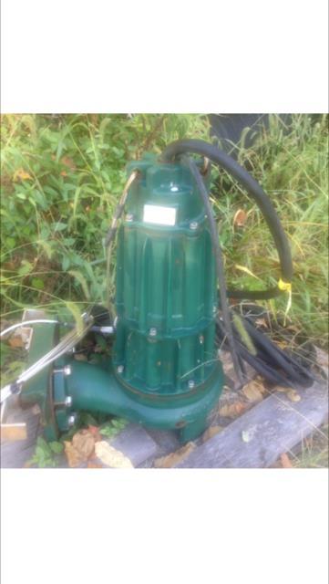 Image ZOELLER J6125-A Pump 1306324