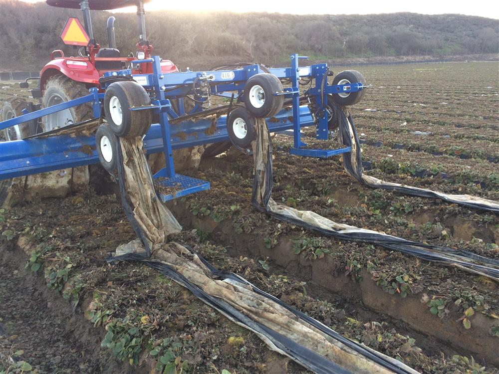ANDROS 3 Row Extraction - 352596 For Sale Used N/A