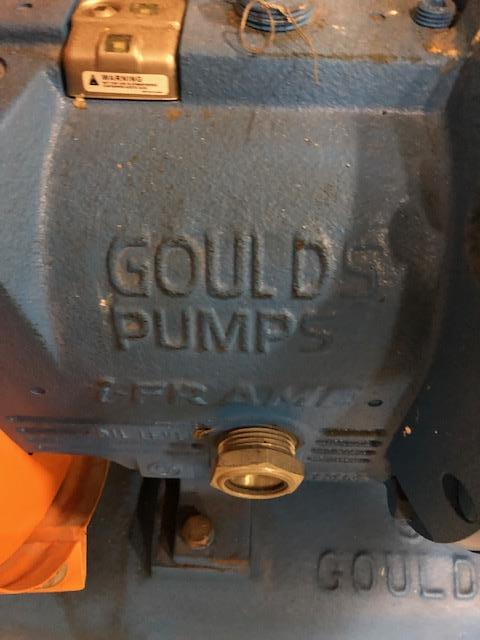 Image GOULDS 3196 Centrifugal Pump - Size 3X4-10 1386305