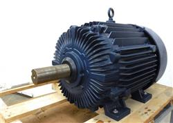 Image 100 HP MARATHON / BLUE MAX Motor 1450921