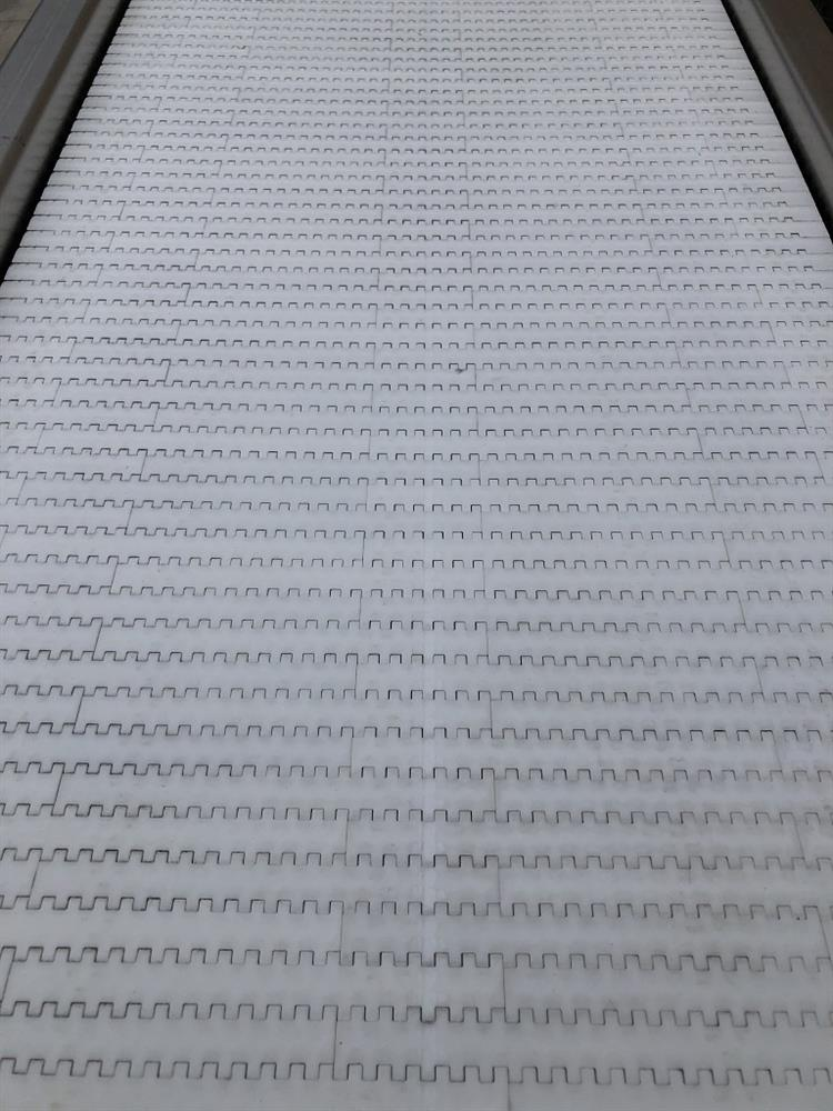 Image 18in X 11ft Long Food Conveyor with Speed Controller 1460855