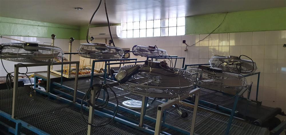 Image Flour Tortilla Plant Production Unit 1468035