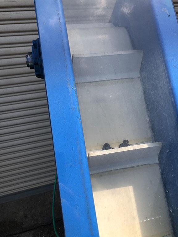 Image HYTROL Product Elevator Hopper Feeder 1495864