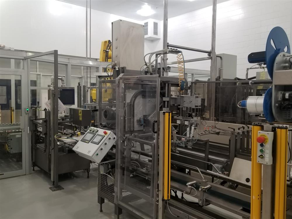 Image WEPACKIT MPT 300 Case Packer 1518282