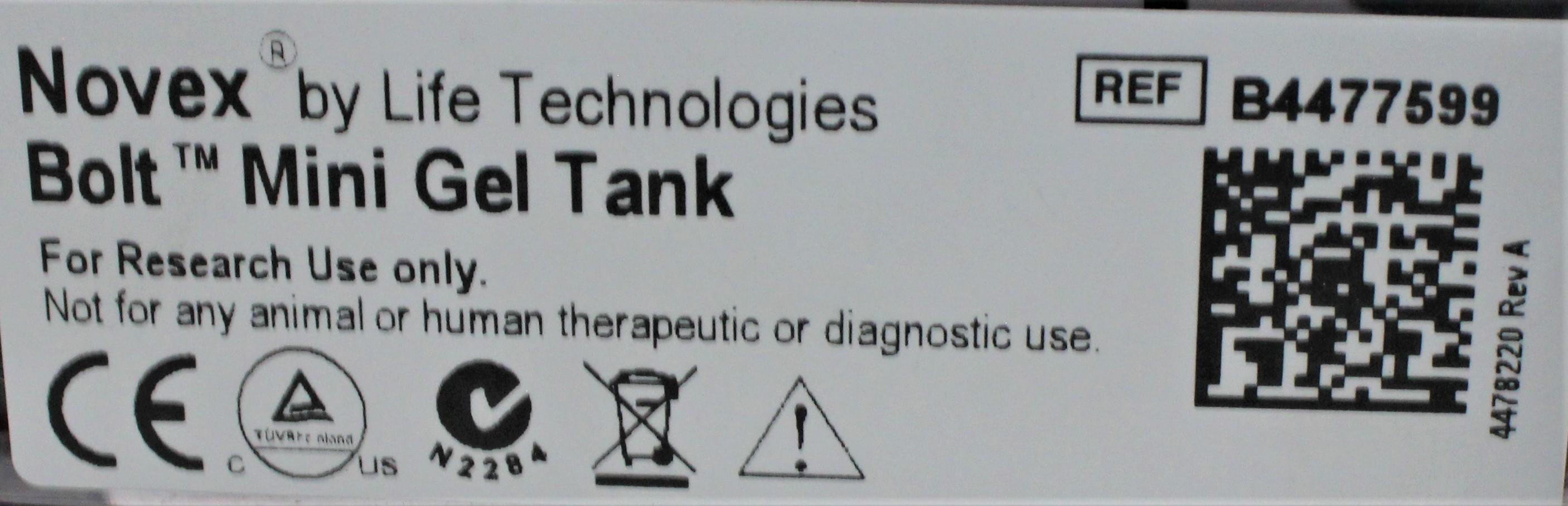 Image LIFE TECHNOLOGIES B4477599 Bolt Mini Gel Tank Electrophoresis 1586961